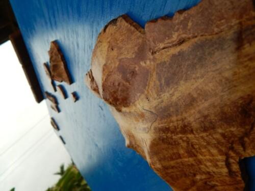 Mango Hawaiian Island Chain Art